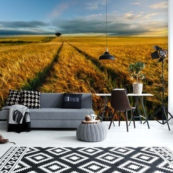Countryside Photo Wallpaper Mural
