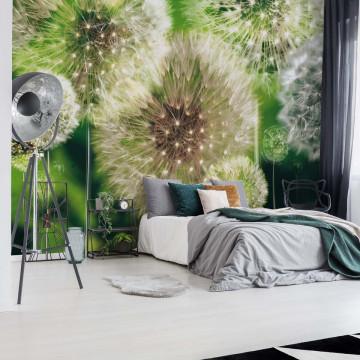Dandelions Photo Wallpaper Wall Mural