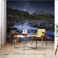 Elements Of Nature Photo Wallpaper Mural