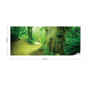 Forest Nature Trees Photo Wallpaper Wall Mural