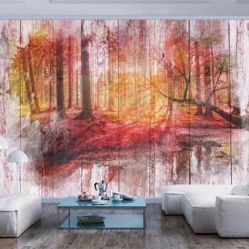 Fototapet autoadeziv - Autumnal Forest