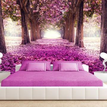 Fototapet autoadeziv - Pink path