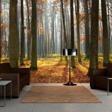 Fototapet - Autumn trees