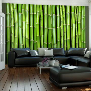 Fototapet - Bamboo wall