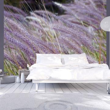 Fototapet - Green field and purple flowers