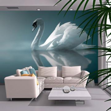 Fototapet - White swan
