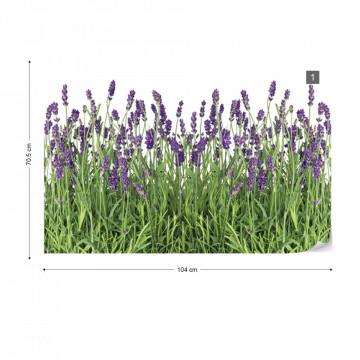 Lavender Photo Wallpaper Wall Mural