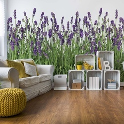 Lavender Photo Wallpaper Wall Mural