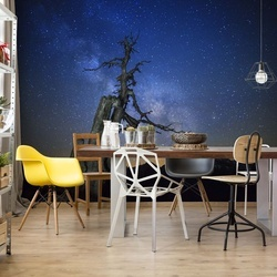 Milky Way Photo Wallpaper Mural