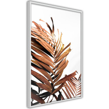 Poster - Copper Palm