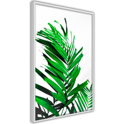 Poster - Emerald Palm