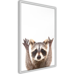 Poster - Funny Racoon