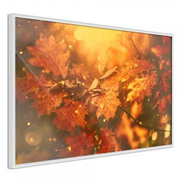 Poster - Golden Autumn