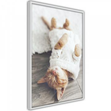 Poster - Kitten Life