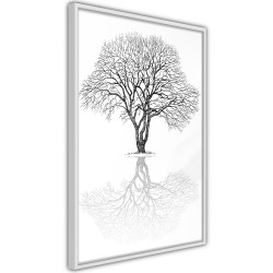 Poster - Roots or Treetop?