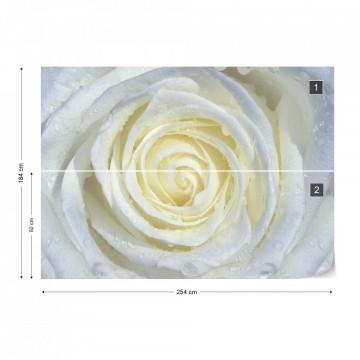 Rose Flower White Photo Wallpaper Wall Mural