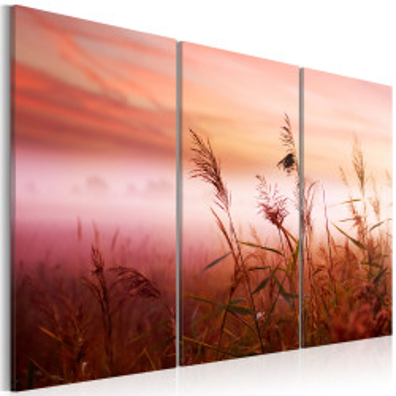 Tablou - A silent meadow