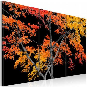Tablou - Autumn reflection