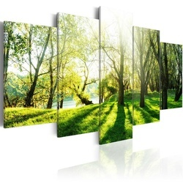 Tablou - Green Glade