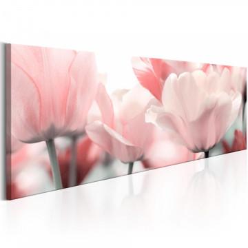Tablou - Pink Tulips