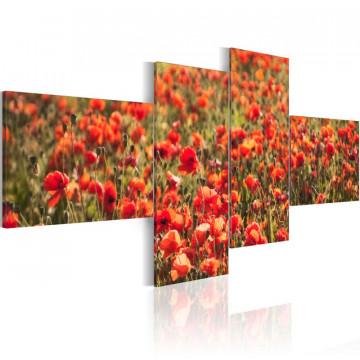 Tablou - Poppies everywhere!