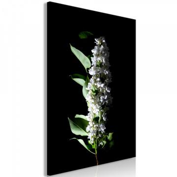 Tablou - White Lilacs (1 Part) Vertical