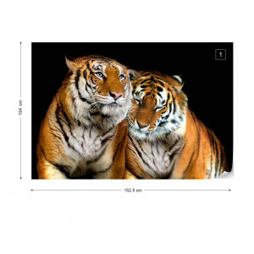 Tigers Photo Wallpaper Wall Mural