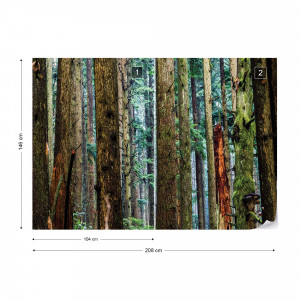 Tree Textures In The Forest Photo Wallpaper Wall Mural