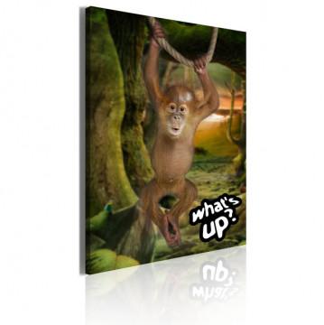 Tablou - Little monkey