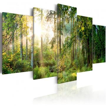 Tablou - Green Sanctuary