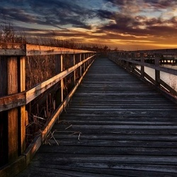 Boardwalk Photo Wallpaper Mural