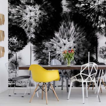 Dandelion Black And White Photo Wallpaper Wall Mural