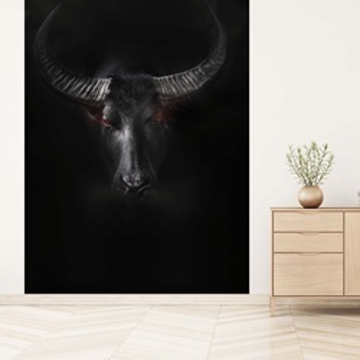 Dark African Buffalo Photo Wallpaper Wall Mural