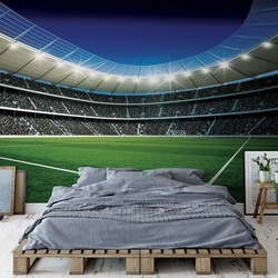 Football Stadium Sport Photo Wallpaper Wall Mural