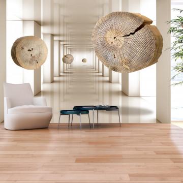 Fototapet autoadeziv - Flying Discs of Wood