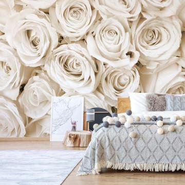 Fototapet - Buchet de Trandafiri – Sepia