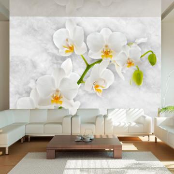 Fototapet - Lyrical orchid - White