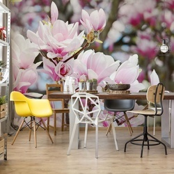 Magnolia Flowers Photo Wallpaper Wall Mural
