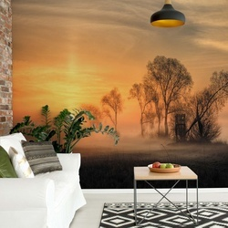 Misty Sunset Photo Wallpaper Mural