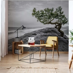 Mountain Tree Photo Wallpaper Wall Mural