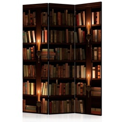 Paravan - Bookshelves [Room Dividers]