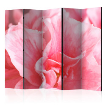 Paravan - Pink azalea flowers II [Room Dividers]