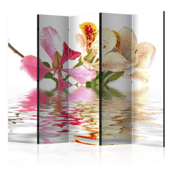 Paravan - Tropical flowers - orchid tree (bauhinia) II [Room Dividers]