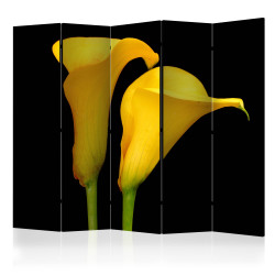 Paravan - Two yellow calla flowers on a black background II [Room Dividers]