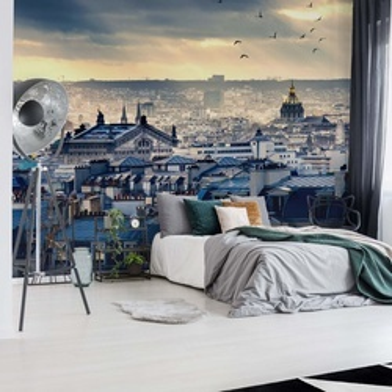Paris Rooftops Photo Wallpaper Wall Mural