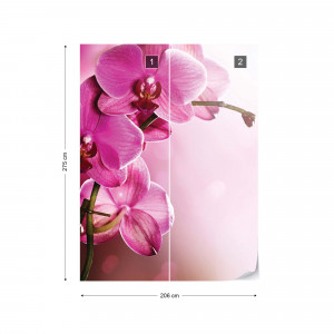 Pink Orchids Flowers Photo Wallpaper Wall Mural