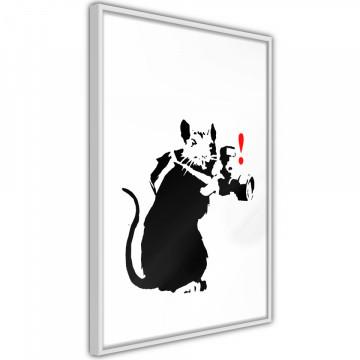 Poster - Banksy: Rat Photographer