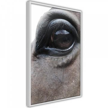 Poster - Gentle Eyes
