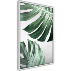 Poster - Leaves Like Swiss Cheese