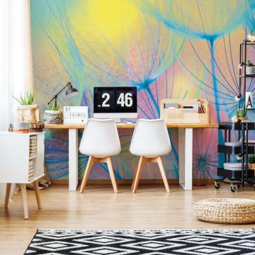 Rainbow Dandelion Photo Wallpaper Wall Mural